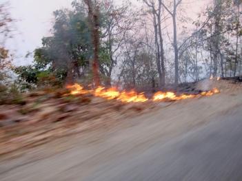 I brann: Chin-staten er i brann i mars-april hvert år, og setter gjerne noen fly på bakken.